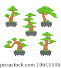 Flat design bonsai tree set 19614346