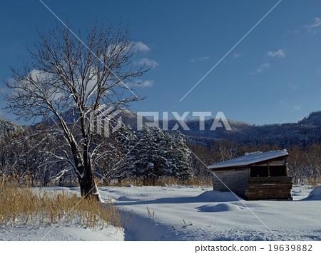 Stock Photo: snow scene, sky, snow