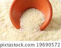 Jasmine rice 19690572
