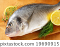 Fresh sea bream on cutting board 19690915