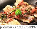 Pan fried fish fillets 19690992