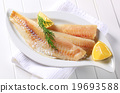 White fish fillets 19693588