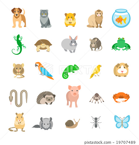 Animals pets vector flat colorful icons set 19707489