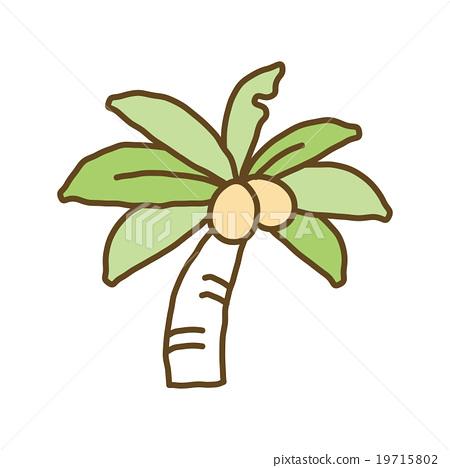 Palm tree 19715802