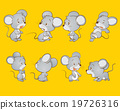 Cute mouse 19726316