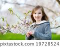 Adorable little girl in blooming cherry garden 19728524