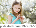 Adorable little girl in blooming cherry garden 19728927