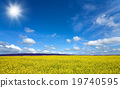 Flower field and blue sky with sun 19740595