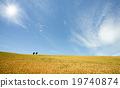 Golden wheat field with blue sky in background 19740874