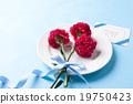 花卉 礼物 花 19750423