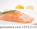 食物 鮭魚 三文魚 19751510