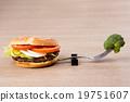 西蘭花 花椰菜 卡路里 19751607
