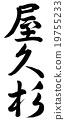 야쿠 삼나무 19755233