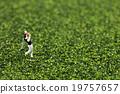 愛好 高爾夫 照片 19757657