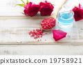 瓶子 花朵 花 19758921
