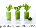 蔬菜 食品 概念 19759955