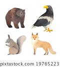 홋카이도 동물 시리즈 곰 독수리리스 여우 19765223