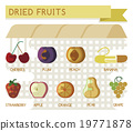 Dried fruits vector concept 19771878