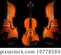 Closeup Violin orchestra musical instruments on black background 19778569