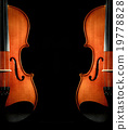 Closeup Violin orchestra musical instruments on black background 19778828