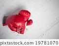 包裝 拳擊 手套 19781070