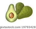 avocado 19793428