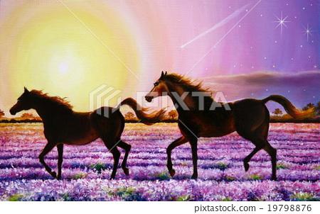 ม้า,ฤดูใบไม้ผลิ,แสงอาทิตย์ 19798876