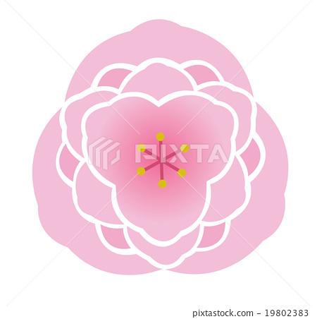 Peach blossoms 19802383