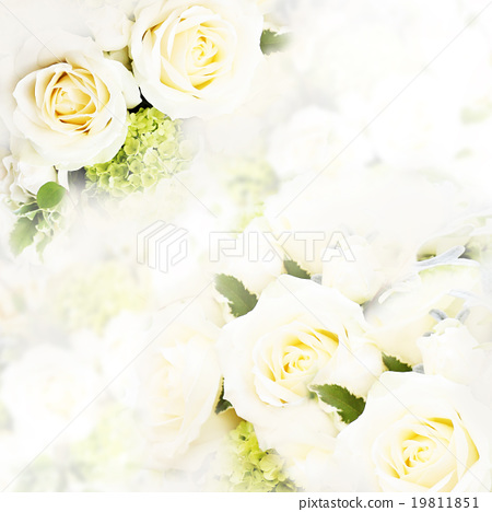 背景 背景圖 花朵 19811851