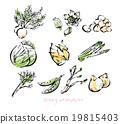 春蔬 食材 原料 19815403