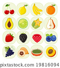Set of different kinds of fruit icons. 19816094