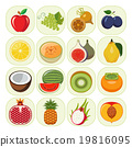 Set of different kinds of fruit icons. 19816095