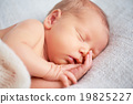 newborn, baby, sleep 19825227