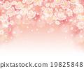 cherry blossom tree 19825848