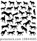 Collection of silhouettes of 32 galloping horses 19844685