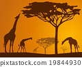 vector, silhouette, background 19844930