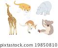 動物 插圖 插畫 19850810