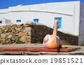 นกกระทุง,นก,สัตว์ 19851521