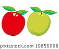 apple, apples, green 19859098