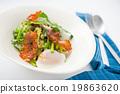 modern style salad 19863620