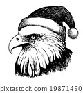 eagle bird with christmas hat 19871450
