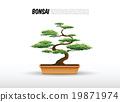 bonsai plant 19871974