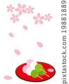 樱花 樱桃树 落樱如雪 19881889
