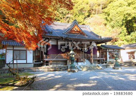 吉香 공원 하쿠 비 咩神社 19883680