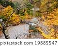 Kinshichu Incinerous Hiking Line 19885547