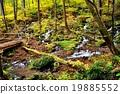 Kinshichu Incinerous Hiking Line 19885552