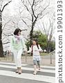 櫻花 櫻 賞櫻 19901393