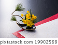 fresh flowers, floral arrangement, ikebana 19902599