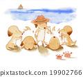 動物 狗 狗狗 19902766