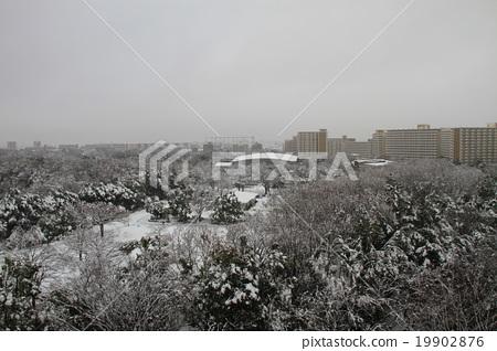 Hikarigaoka Park 19902876